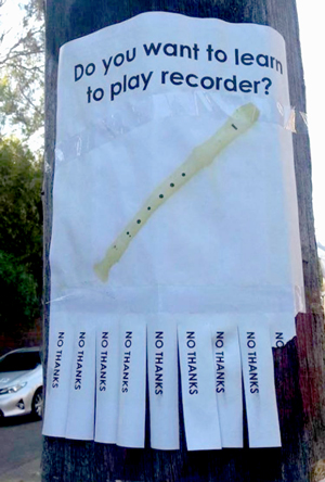 Why did we learn to play recorder in school?